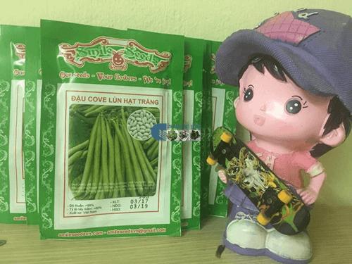 Gói bao bì hạt giống đậu lùn trắng tại shop hạt giống tí hon